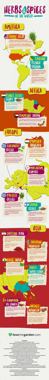 Lovely Infographic about Herbs and Spices of the World!