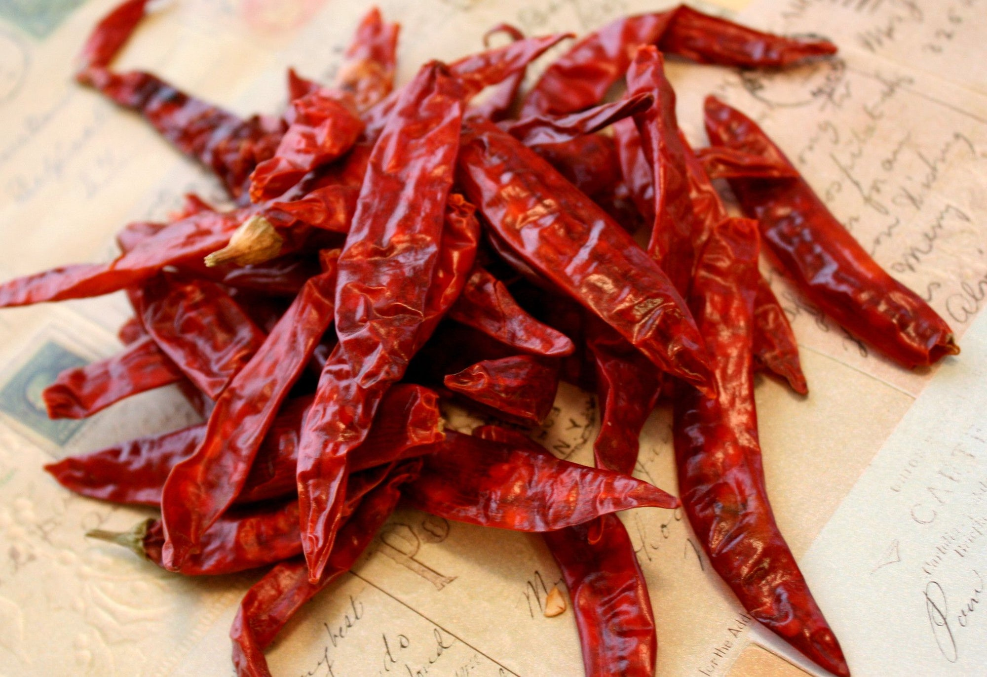 Chilli (Dried / Whole) 50g - Spice Kitchen - Spices, Spice Blends, Gifts & Cookware
