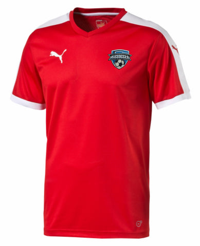 Puma Pitch Shortsleeved Shirt (Adult & Youth) [KISsoccer]
