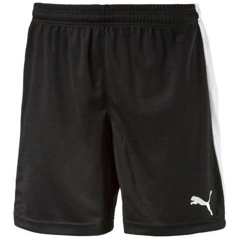 Puma Pitch Shorts (Adult & Youth)