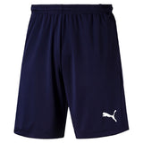 Puma LIGA Training Shorts