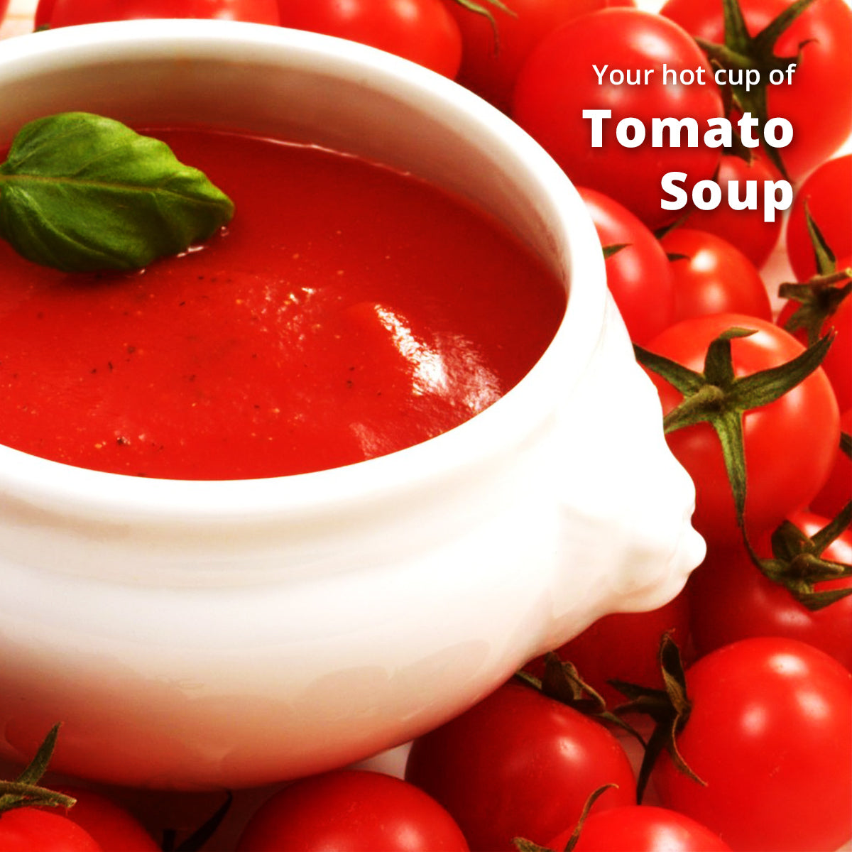 Tomato Soup Premix (500g) | Makes 40 Cups | Rich Taste as Home-Made | Mixture of Aromatic Herbs & Spices | For Manual Use - Just add Hot Water | Suitable for all Vending Machines