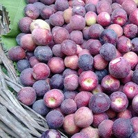 Falsa (Sherbet Berry) (350 gm)