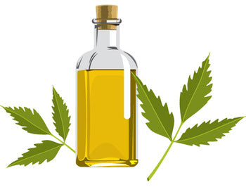 Pure Neem Oil (100 ml)