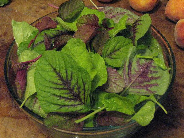 Rajgira / Amaranth Leaves (400 gm)