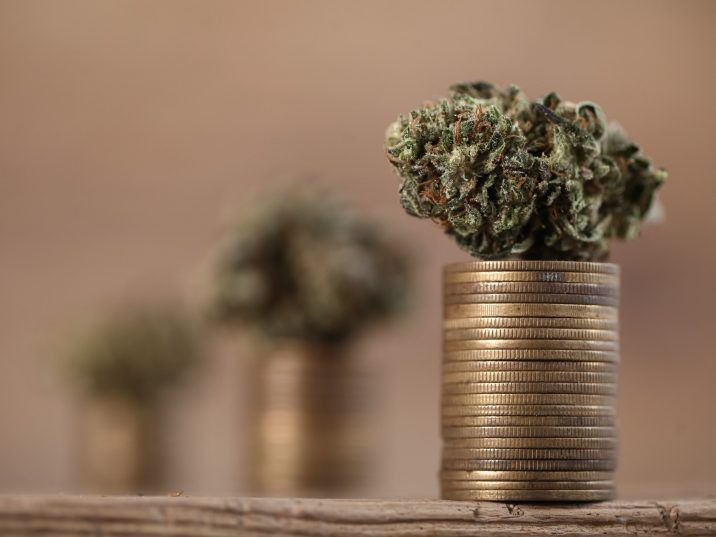 The Volatility of Financing a Cannabis Business