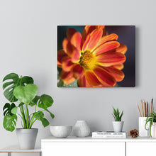 Load image into Gallery viewer, Spring Flower