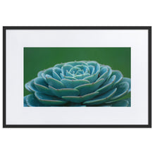 Load image into Gallery viewer, Succulent Plant - Matte Paper Framed Poster With Mat