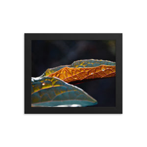 Flipped Orange Leaf - Framed photo paper poster