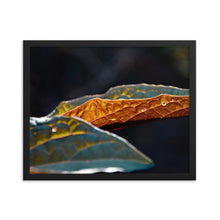Load image into Gallery viewer, Flipped Orange Leaf - Framed photo paper poster