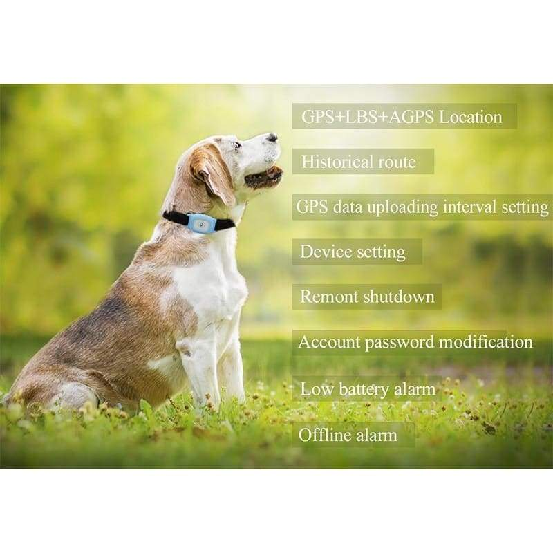 Pet GPS Tracker Collar