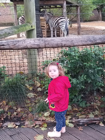 Elin in awe of the zebras at ZSL London Zoo