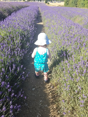 Elin enjoying the aisles of fresh lavendar at Hitchin Lavendar Farm
