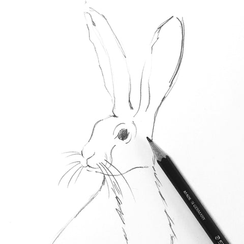 Initial Sketch of our Hare for our Canvas Bags