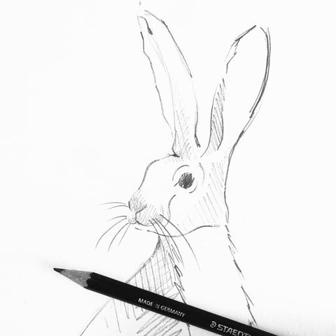 Pencil sketch of Hare for countryside collection canvas bags
