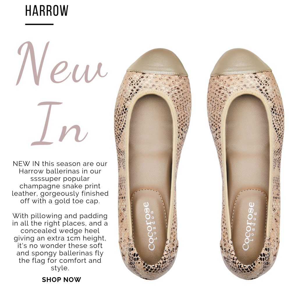 Cocorose London's Champagne Gold Snake Print with Gold Toe Cap Foldable Leather Ballerina with Concealed Wedge Heel