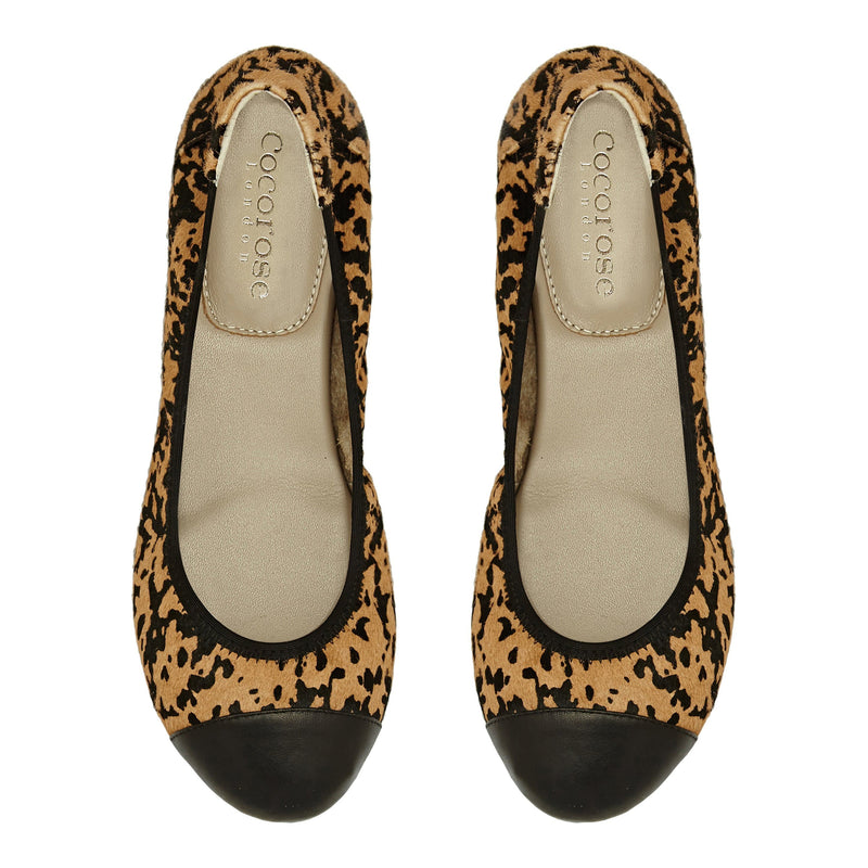 Harrow - Leopard Print with Black Cap Ballerinas