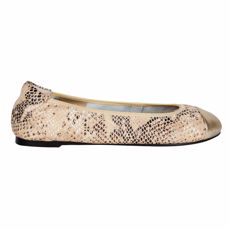 Harrow - Champagne with Gold Cap Ballerinas