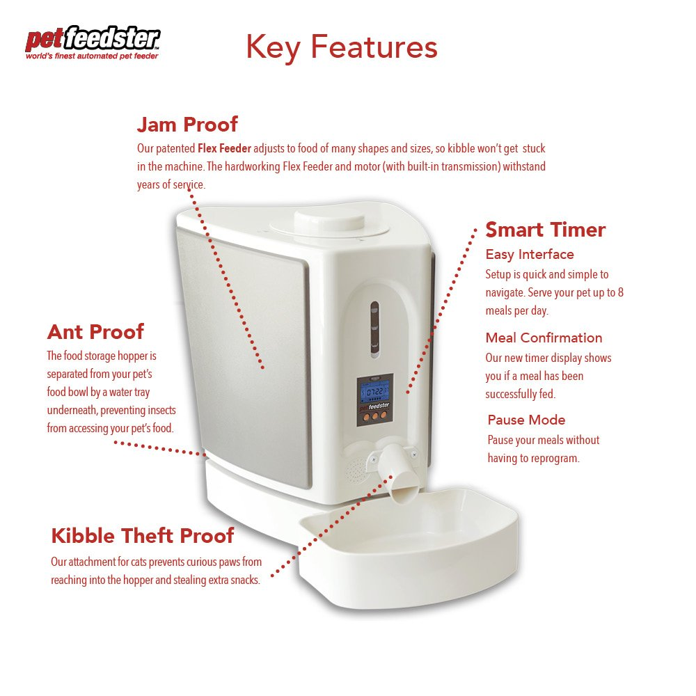 Pet Feedster PLUS - Automatic Dog Feeder