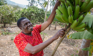 Empowered women empowering women | Lucy Waweru | Jali Fruit Co.