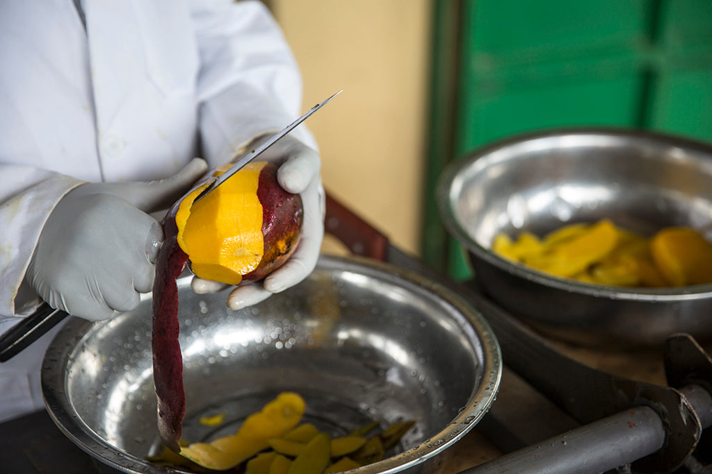 cutting mango slices for drying