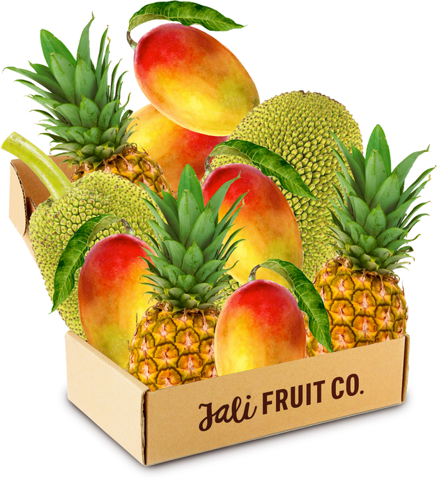 10-Pack The Jali Fruit Co.