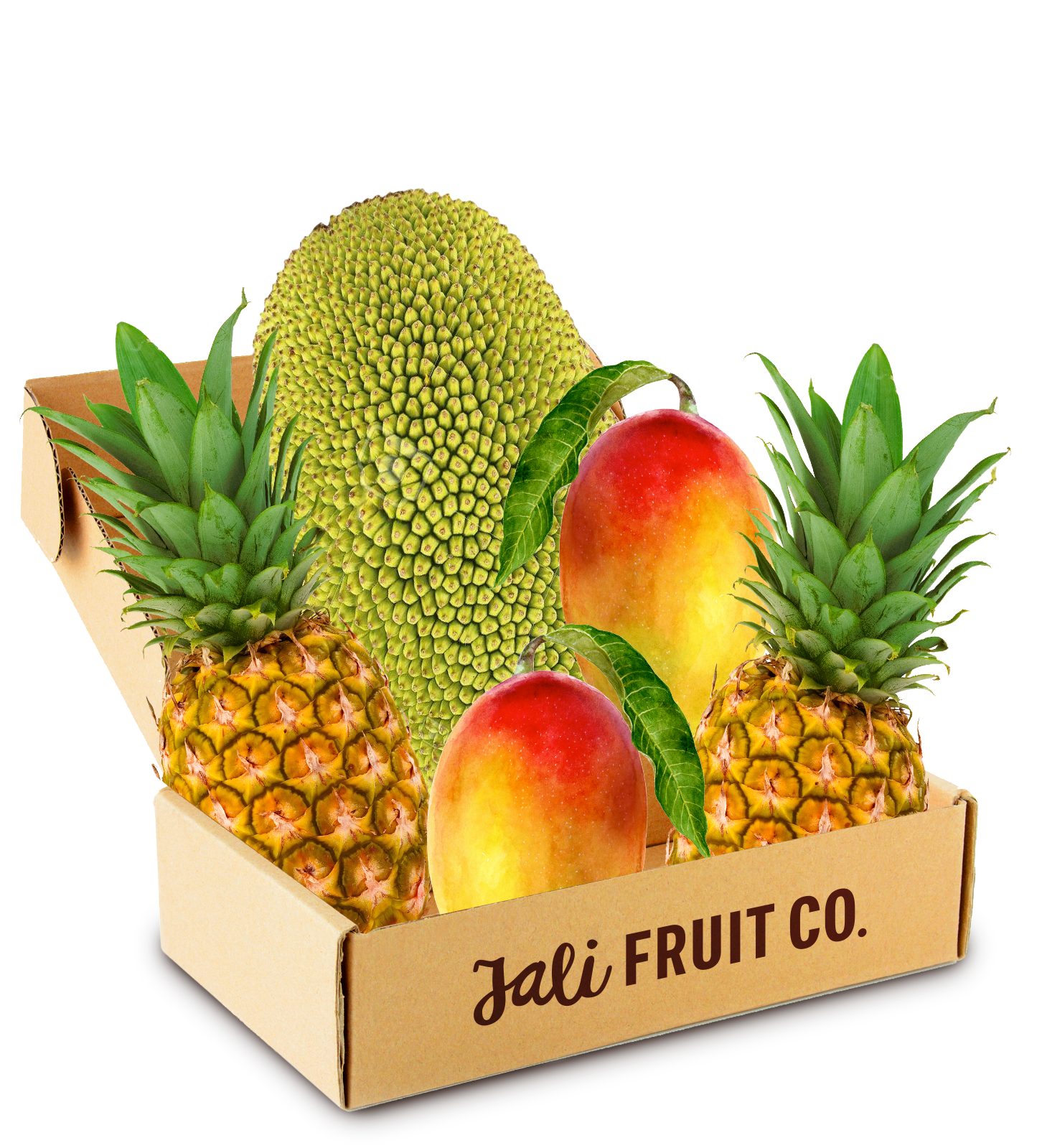 5-Pack The Jali Fruit Co.