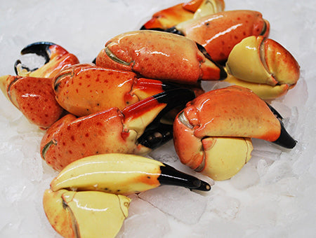 Stone Crab Claws, A Florida Delicacy