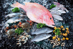 assortment of fresh fish and shellfish