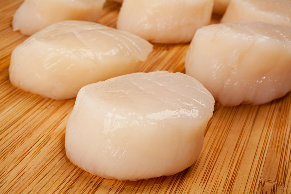 Fresh Atlantic Sea Scallops