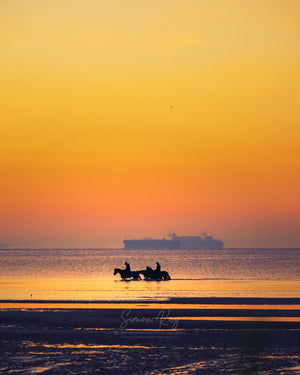 Horse riders at dawn, cargo ships in the distance on Port Phillip Bay