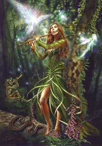 The Faerie Reel