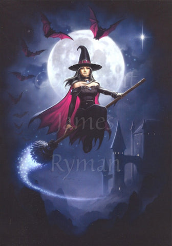 Witch Flight