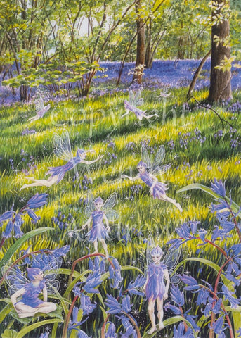 Bluebell Wood Faeries