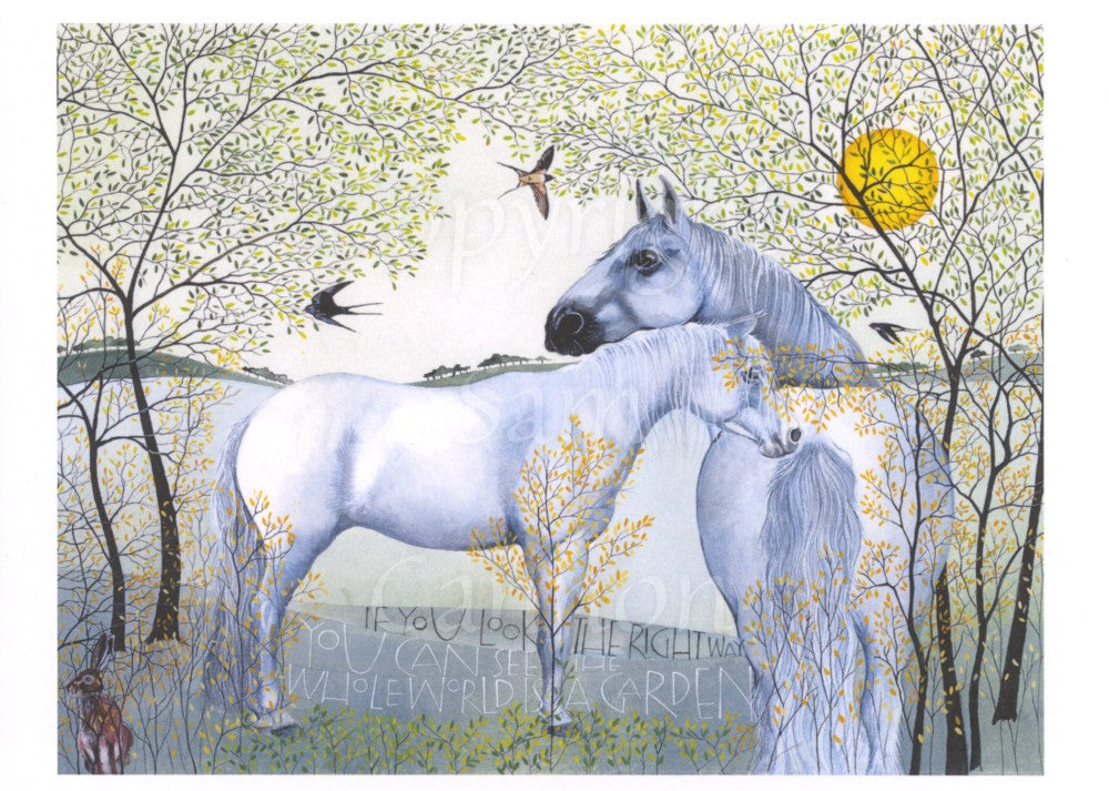 The Grey Horses and the Swallows