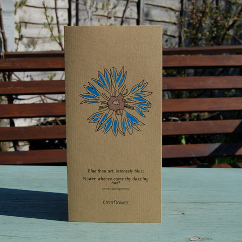Cards with Real Seeds - Cornflower