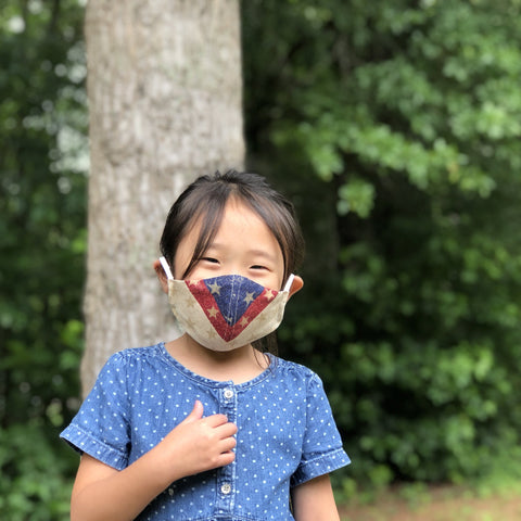 Fabric Face Mask (Patriot B)-Fabric Mask-Handcrafted Joy Boutique-Handcrafted Joy Boutique