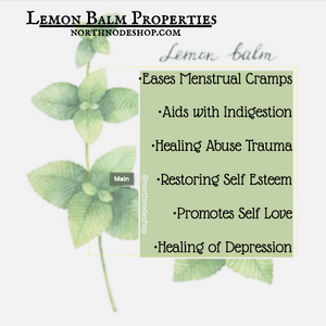 Lemon Balm in your Life