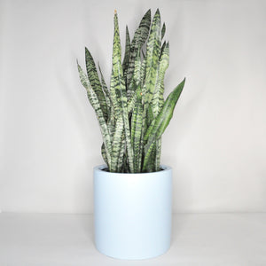 Load image into Gallery viewer, Large Coastal Blue Planter