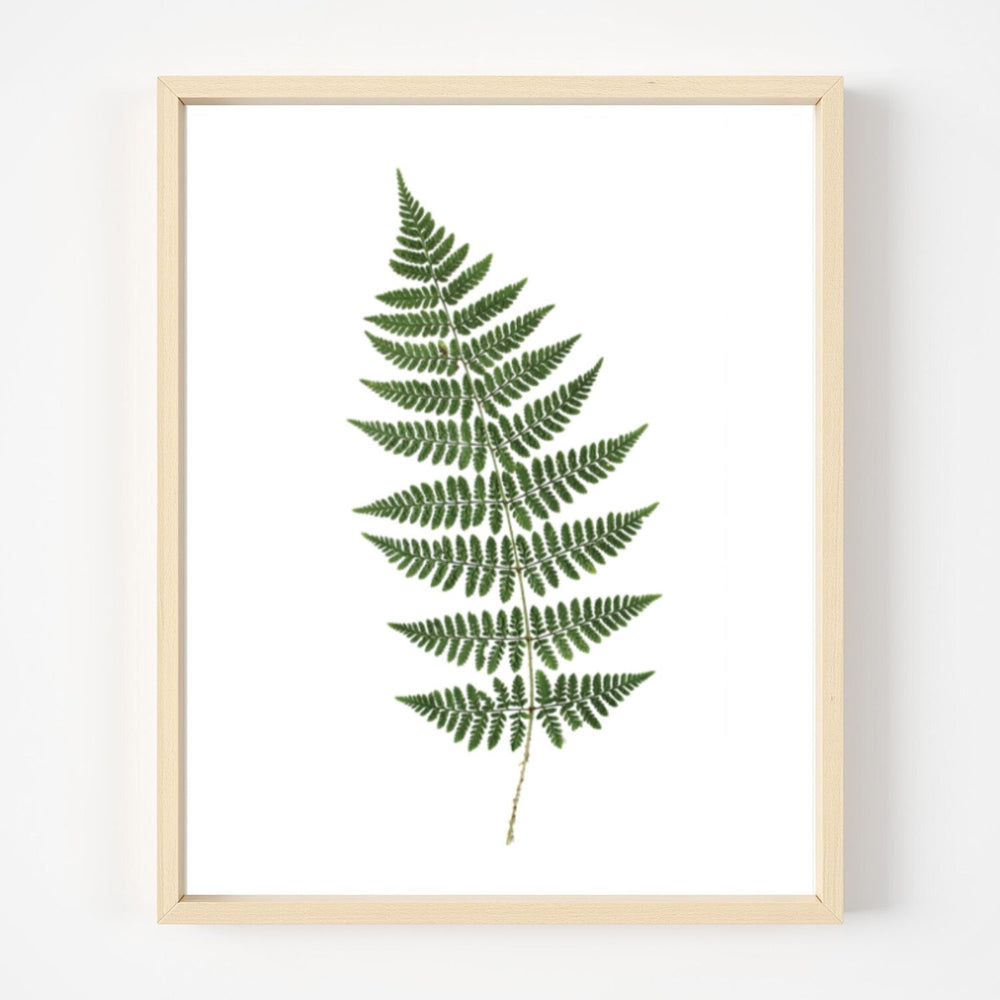 Load image into Gallery viewer, Fern Print