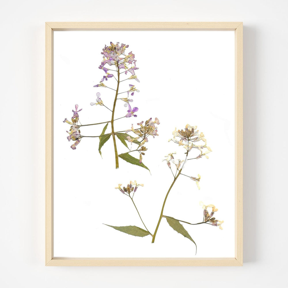 Load image into Gallery viewer, Flower Print