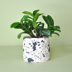 Small Black Speckle Planter