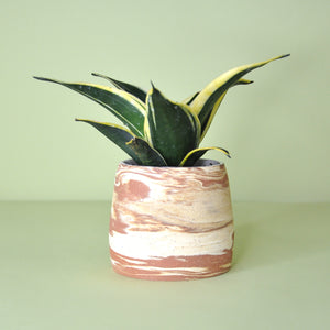 Load image into Gallery viewer, Small Marble Planter