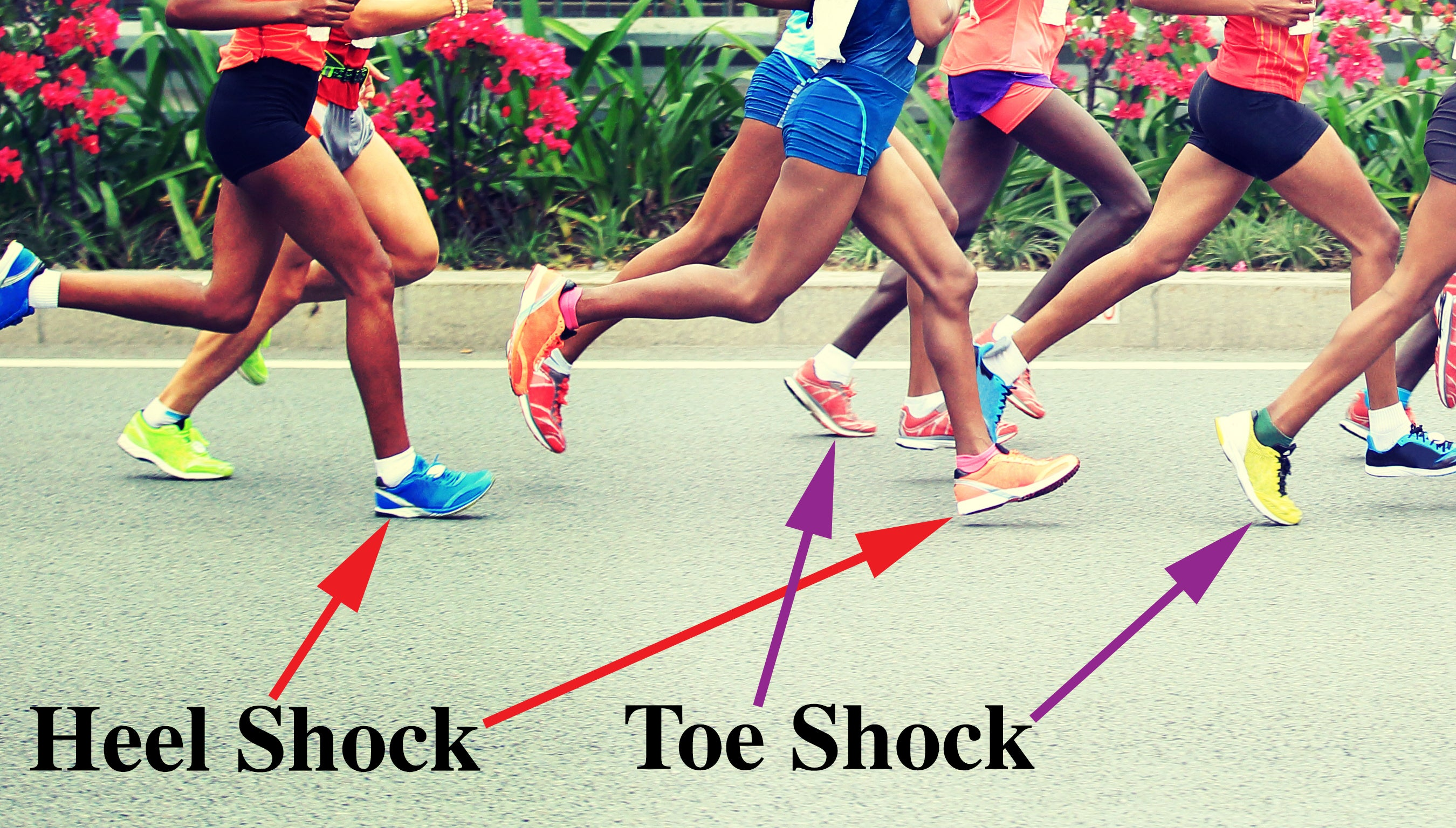 Heel Shock and Toe Shock