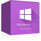 Windows 10 Professional 32 / 64 Bit