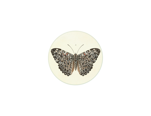 "Butterfly 1 - 4"" round"