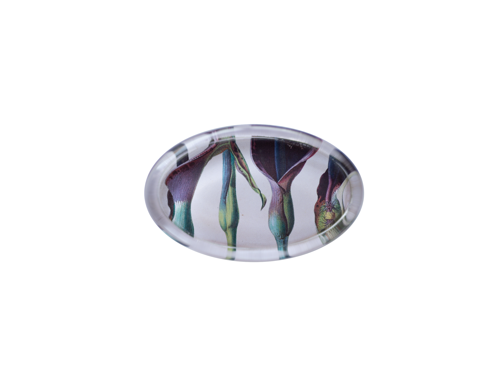 Calla Lilies paperweight