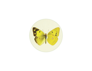 "Yellow Butterfly - 4"" round plate"