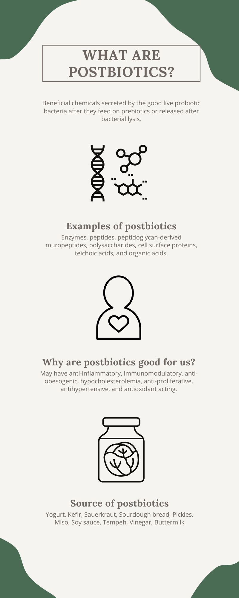 """What are postbiotics?  With growing interest around gut health, there is more and more confusing terminology used within the health food space, such as prebiotics, probiotics, and now postbiotics. Let's start with the most commonly known one; the probiotics, which are live """"good bacteria"""" that reside within our gut that are shown to support our immune system, gut health, and even mood. Prebiotics are the food for probiotics that keep them alive and healthy in our gut.  Postbiotics are beneficial chemicals secreted by the good live probiotic bacteria after they feed on prebiotics or released after bacterial lysis, such as enzymes, peptides, peptidoglycan-derived muropeptides, polysaccharides, cell surface proteins,  teichoic acids, and organic acids. Postbiotics are often obtained during the fermentation process.  So, in essence, postbiotic is the sum of what happens when prebiotics and probiotics come together. Postbiotics have recently been of interest due to their unique chemical structure, safety dosing, long shelf life, and its content in various signaling molecules that may have anti-inflammatory, immunomodulatory, anti-obesogenic, hypocholesterolemia, anti-proliferative, antihypertensive and antioxidant acting."""