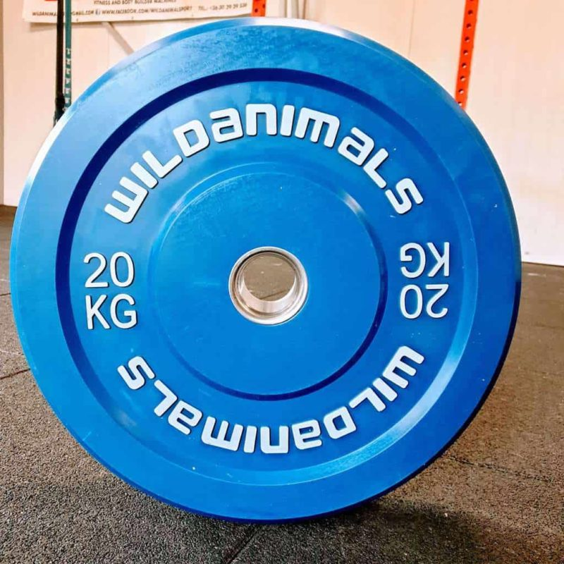 Brand New Wild Animals 2 x 20kg Coloured Olympic Bumper Plates